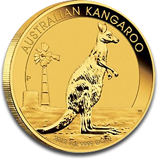 About the Australian Gold Kangaroo / Nugget